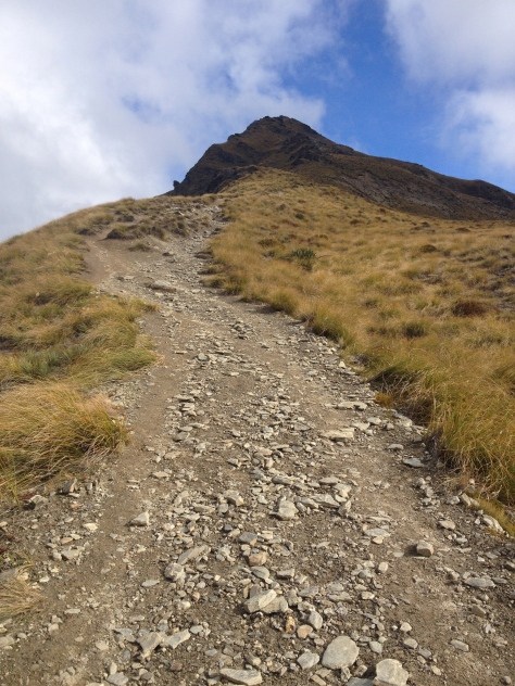 The trail up to the summit.