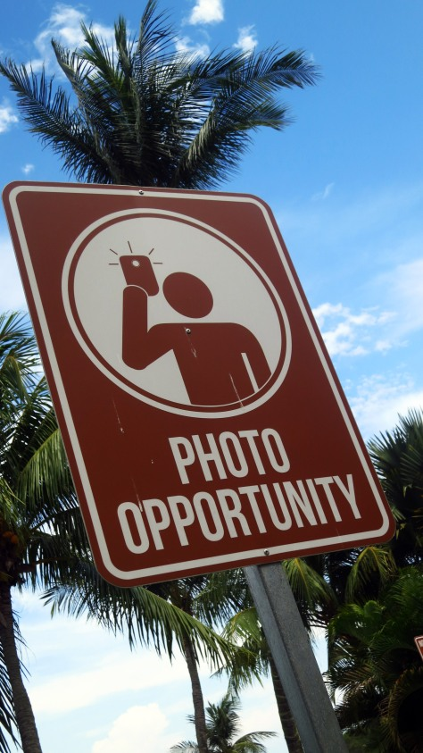 Searching for the perfect photo-op spot? Look no further.