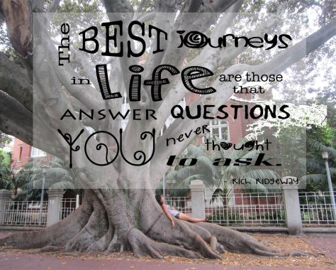The best journeys in life are those that answer questions you never thought to ask. - Rich Ridgeway