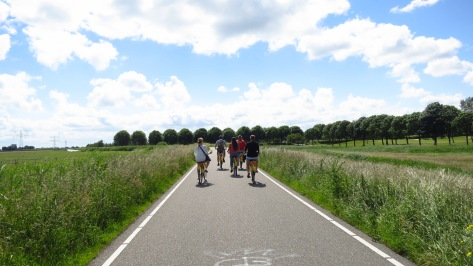 Yellow City Bike Tours - Countryside Tour