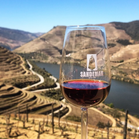 A wine tour is a must, of course, when in the region. @ Sandeman's in Quinta do Seixo